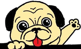 Dogくん
